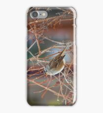 White Crowned Sparow iPhone or iTouch Cover iPhone Case/Skin