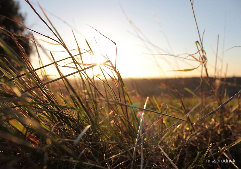 Spring Grass by missbrodrick
