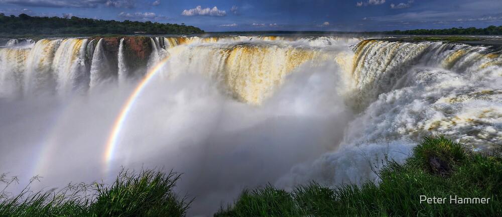 Horseshoe Falls by Peter Hammer