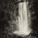 Water Veil Monochrome by Peter Hammer