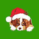 Red Tri Aussie Puppy in a Santa Hat by Barbara Applegate