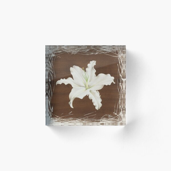 Brown Lily Acrylic Block