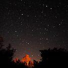 Starry Sky by Robin Black