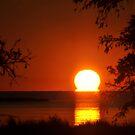 Salvo Sunset by Robin Black
