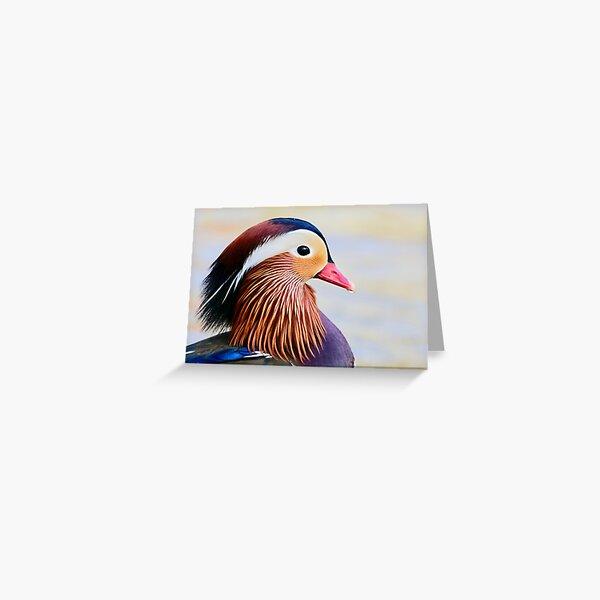 Mandarin Duck. Greeting Card