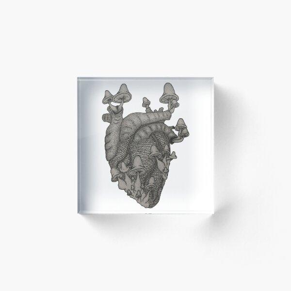 Trippy Heart Acrylic Block