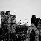 Winter's Abbey, Wellingtonbridge, County Wexford, Ireland by Andrew Jones