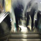 Step - 2012 by Joseph Rotindo