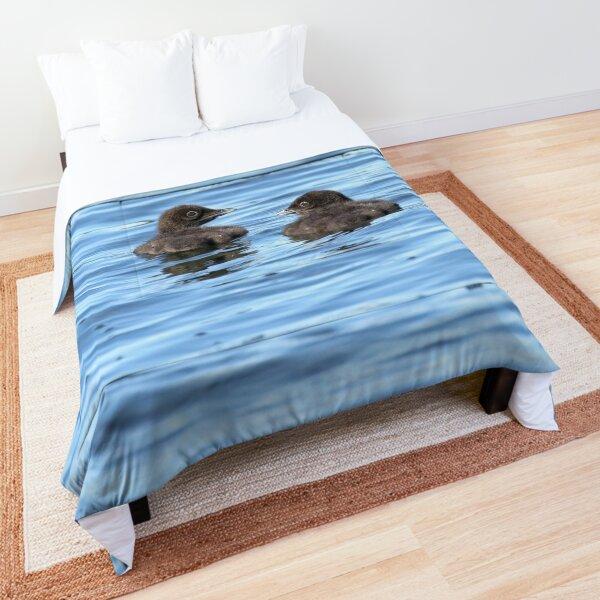 Baby loons Comforter