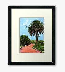 Boardwalk At Myrtle Beach State Park Framed Print