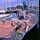5 ★★★★★ . One day at Costa Smeralda . Porto Cervo. Sardegna . Bella Italia. by Brown Sugar. Views (200) grazie amici ! by © Andrzej Goszcz,M.D. Ph.D