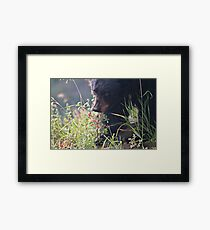 Young Black in fall coat #1 Framed Print