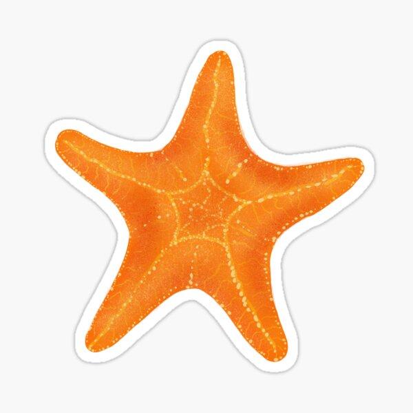 Seastar starfish Sticker