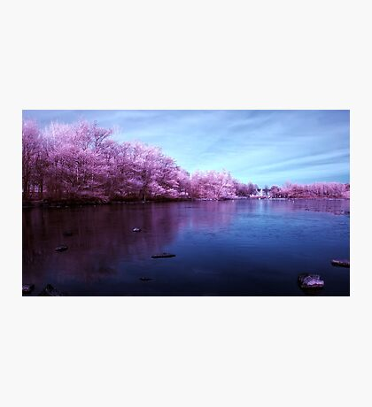 Candy Floss Lake Photographic Print