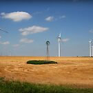 Kansas Windmills by Charlie Bookout