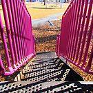 Going Down by Brenda Dahl
