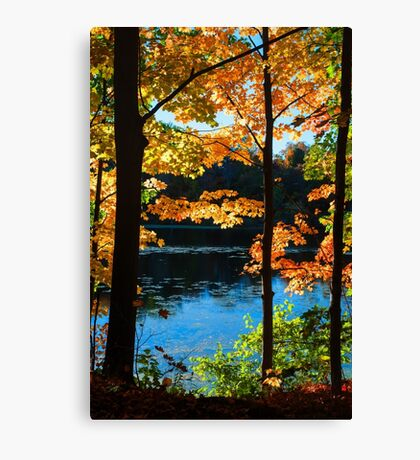 Foliage by the Nashua River Canvas Print