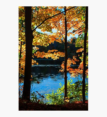 Foliage by the Nashua River Photographic Print