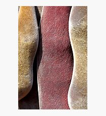 pods tricolor Photographic Print