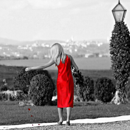 A Wedding in Tuscany-Siena, Italy by Deborah Downes