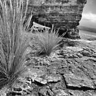 Tufts - Fossil Cove - Tasmania  by WobblyWombat