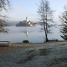 Lake Bled by Ian Middleton