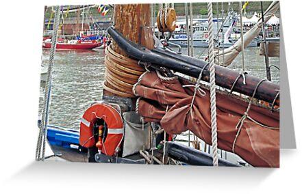LK243 Swan, gaff yoke, sail/mast hoops by Woodie