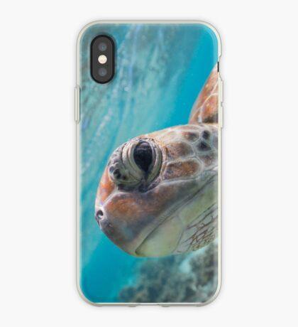 Peekaboo turtle iPhone Case