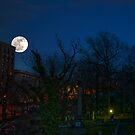 Moon Rising Over Harlem by Mary Ann Reilly