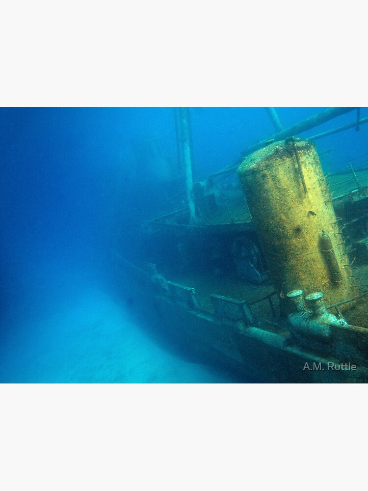 Kittiwake Wreck - Artificial Reef Celebrates Its First Birthday by annruttle