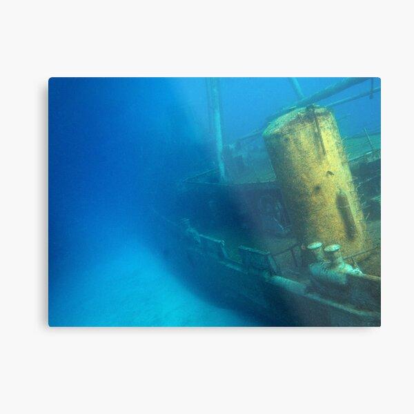 Kittiwake Wreck - Artificial Reef Celebrates Its First Birthday Metal Print
