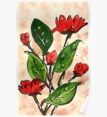 Dew drops on my roses, watercolor Poster