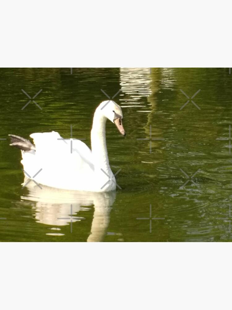 Merch #55 -- Swan - Shot 13 (Pearson Park) by Naean