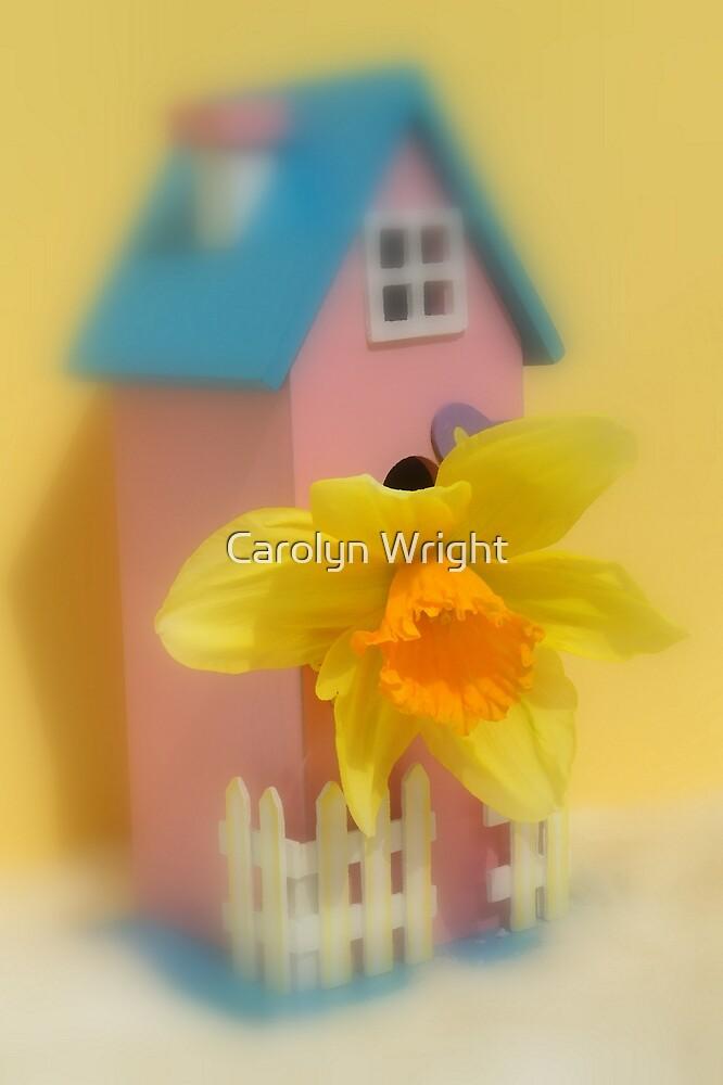 Spring by Carolyn Wright
