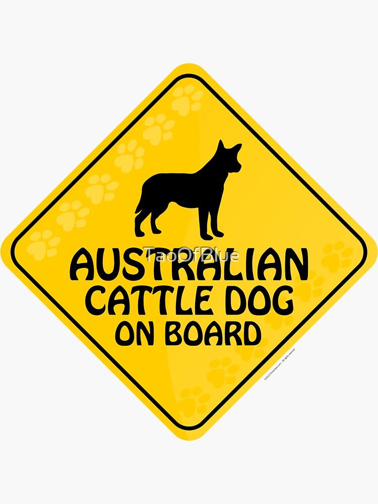 Australian Cattle On Board by TaoOfBlue