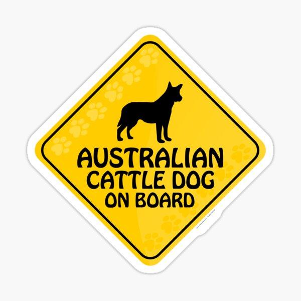 Australian Cattle On Board Sticker