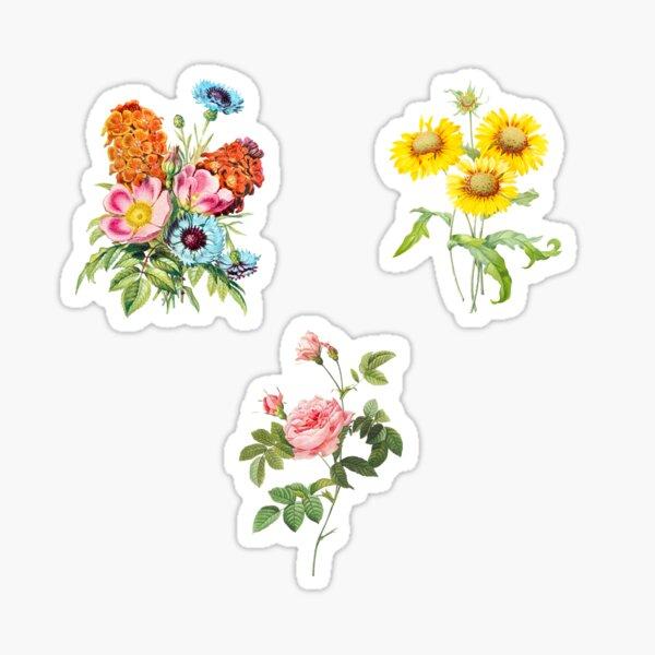 vintage flower sticker set Sticker