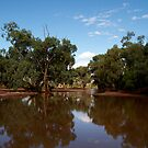 Outback Creek by Stephen Monro