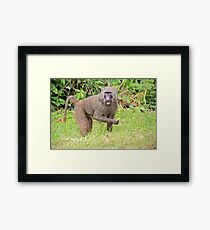 Beware of the Thief Framed Print
