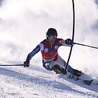 slalom by mattbirch