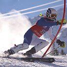 slalom4 by mattbirch