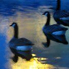 moon lit Geese by Adair  Davidson