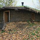 """  The Sod House  "" by fortner"