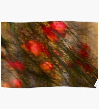 Views: 1426 *** Apple tree Abstract. by Andrzej Goszcz.   Poster