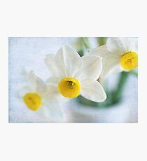 Fragrance Photographic Print