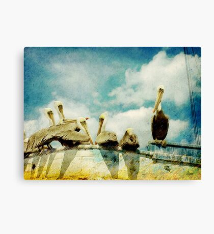 Keep You're Head In The Clouds Canvas Print