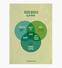Rude Birds by Habitat Photographic Print