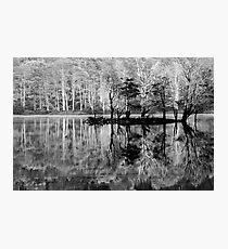 wilmot Photographic Print