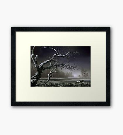 Winter Thaw Framed Print