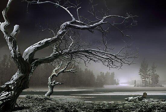 Winter Thaw by Igor Zenin